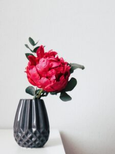 A photo of one fuschia peony flower in a textured dark gray vase on a light gray background