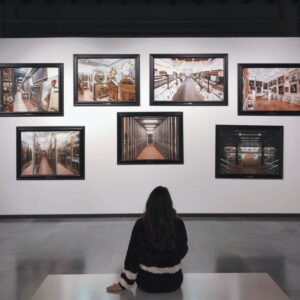 A photo of a seven framed images are displayed on a white art gallery wall in front of a seated gallerygoer.
